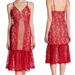 NWT Romeo & Juliet Couture Red Lace Mesh Dress